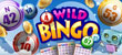 How to Maximize Your Winnings in Bingo Games preview image