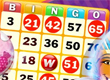 Wingo Bingo preview image