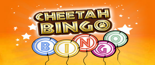 Cheetah Bingo - Enjoy a classic take on bingo with a safari twist.