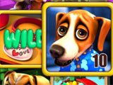 Puppy Love Slots Wild Win